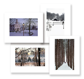 Winter Cards